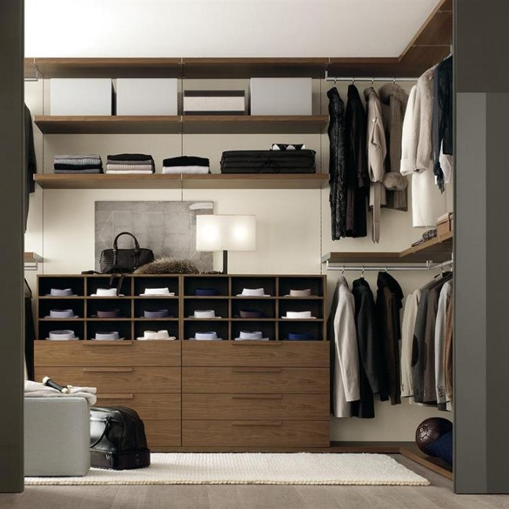 Favorite Tall Walk In Wardrobe For Tall Wardrobes (View 3 of 15)
