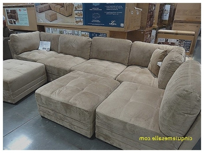 Las Vegas Sectional Sofas Pertaining To Widely Used Sectional Sofas Las Vegas (View 7 of 10)
