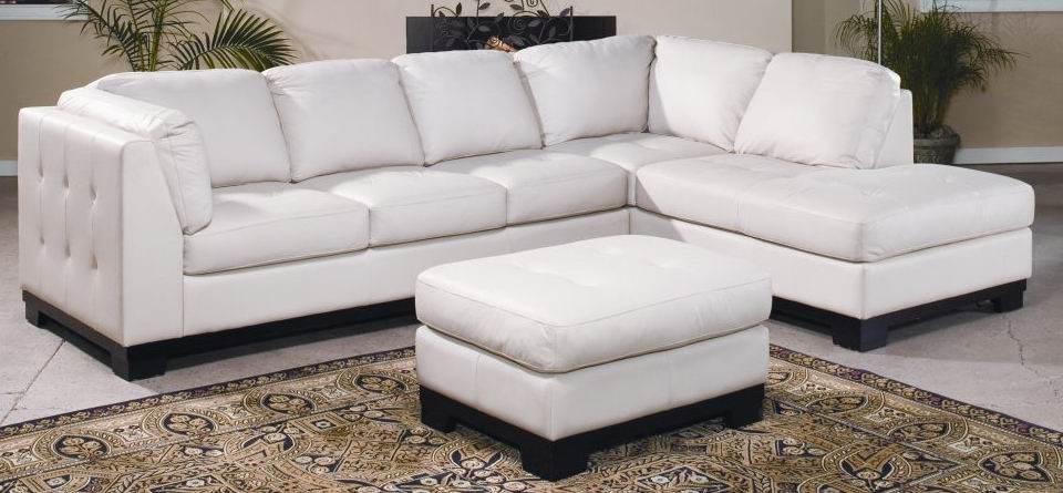 Latest Mississauga Sectional Sofas In Modern Sectional Sofas And Corner Couches In Toronto, Mississauga (View 2 of 10)