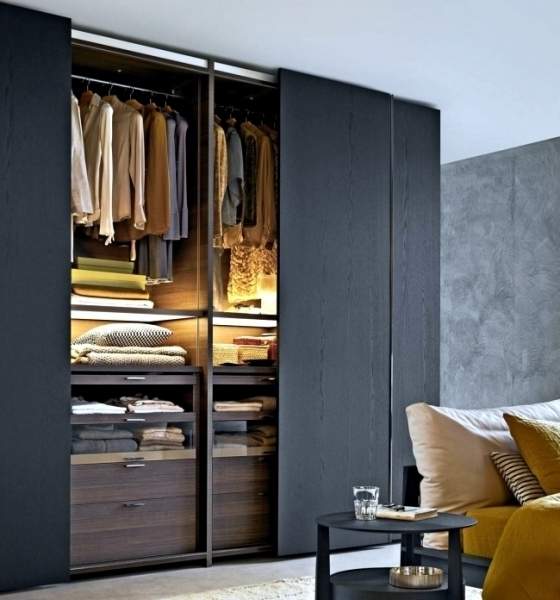 Low Cost Wardrobes With Regard To Preferred Sliding Wardrobe Interior Ideas Wonderfull 2 Door Sliding Wardrobe (View 9 of 15)