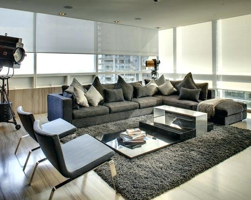 Most Current Houzz Living Room Furniture Appealing Dark Gray Sofa With Dark With Regard To Houzz Sectional Sofas (View 7 of 10)