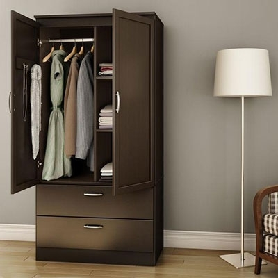 Most Popular Drawers And Shelves For Wardrobes Within Closet Storage & Organization (View 11 of 15)