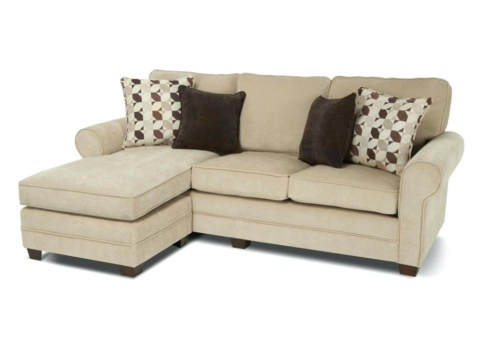 Most Popular Interior Design For Chaise Lounge Sectionals Sleeper Sofa For Sleeper Chaises (View 5 of 15)