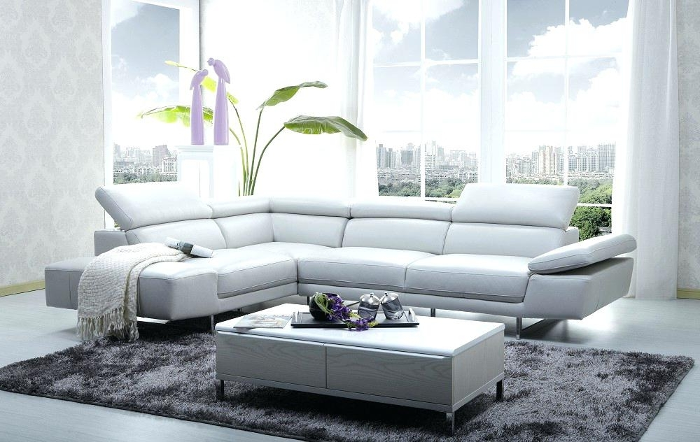 Most Recently Released Best Of Light Grey Sectional Couch And Living Room Fascinating Throughout Light Grey Sectional Sofas (View 10 of 10)