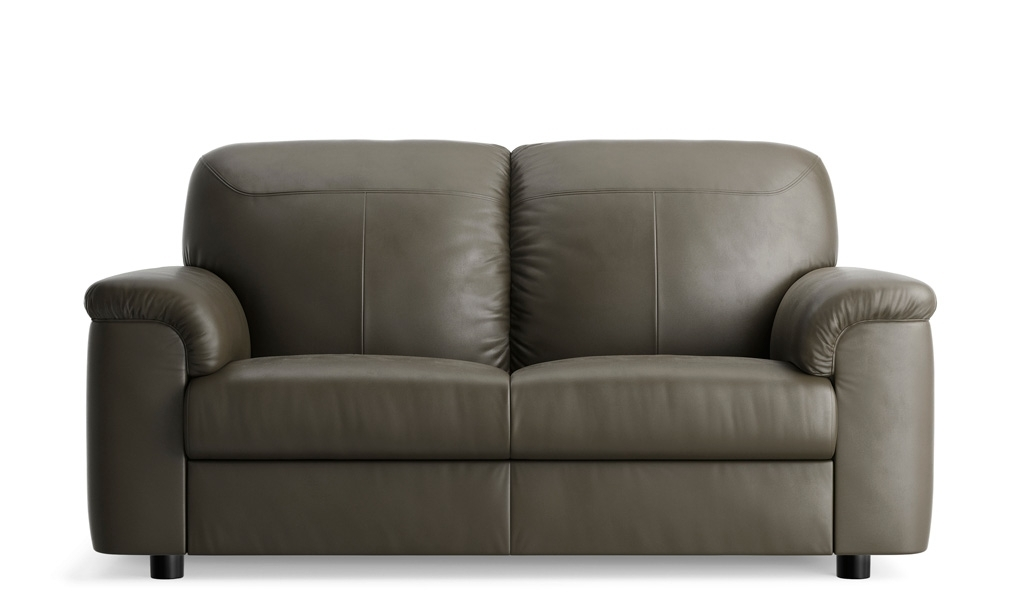 Outstanding 3 Seater Leather Sofa Ikea Pertaining To Couches Intended For Widely Used 2 Seat Sectional Sofas (View 7 of 10)