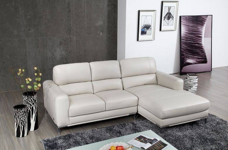 Por Modern Style Apartment Size Leather Sectional Sofa And Exquisite With Regard To Virginia Beach