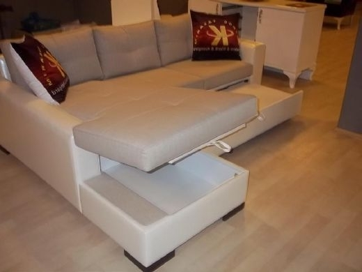 Preferred Sectional Sofas With Storage Pertaining To Minimalist Sectional Sofa Bed With Storage Modern For Living Room (View 4 of 10)