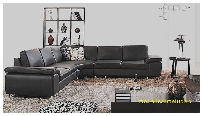 Sectional Sofa : Sectional Sofas Tulsa Fresh Contemporary Style With Well Liked Tulsa Sectional Sofas (View 6 of 10)