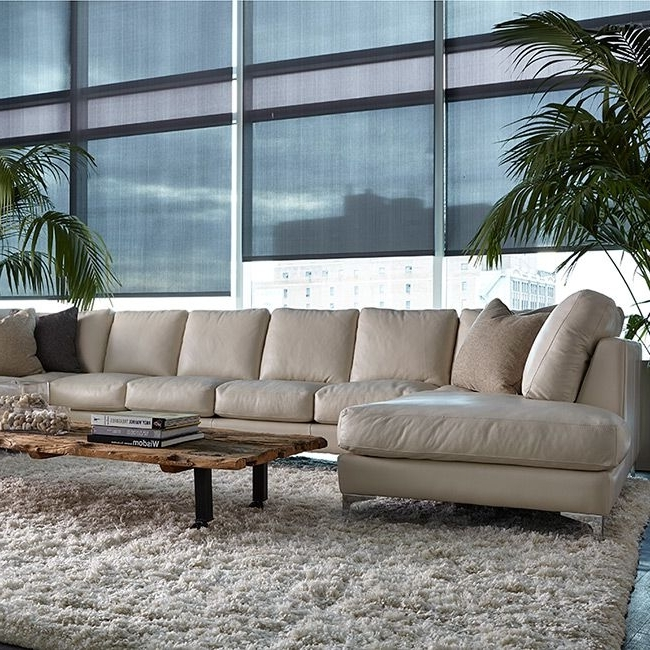 Sectional Sofas (View 9 of 10)