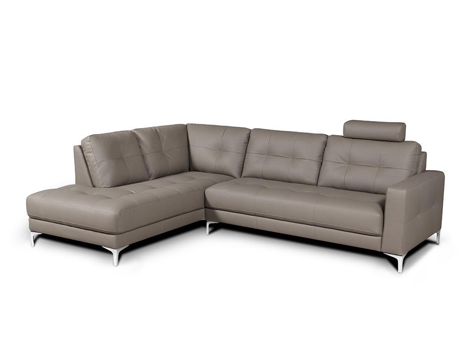 Sofas With Regard To Sleeper Sectionals With Chaise (View 12 of 15)
