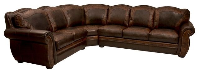 Trendy Western Style Sectional Sofas Regarding Western Style Sectional Sofas – Nrhcares (View 4 of 10)