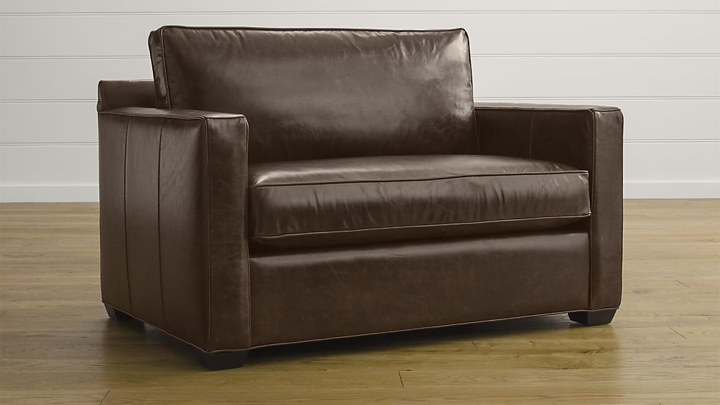 Twin Sleeper Sofa Chair – Oknws Regarding Preferred Twin Sleeper Sofa Chairs (View 7 of 10)