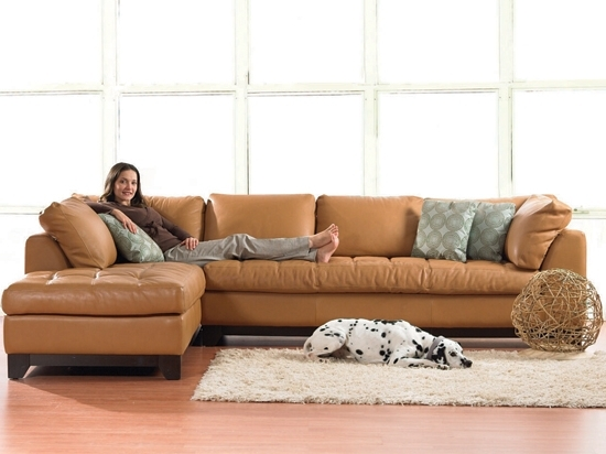 Valenza Chaise Sectional From Plummers; $4699 For Leather But In Most Current Dania Sectional Sofas (Gallery 2 of 10)