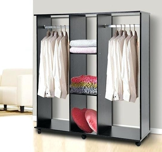 Well Known Wardrobe Hanging Rail Set – Brandonemrich In Double Rail Wardrobes Argos (View 8 of 15)