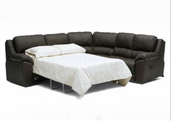 Well Liked Captivating Leather Sleeper Sectional Sofa Sleeper Sofa Benefits Inside Sleeper Sectional Sofas (View 7 of 10)