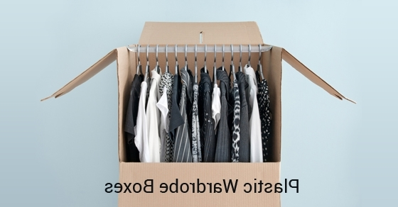 What Are Plastic Wardrobe Boxes? (View 5 of 15)