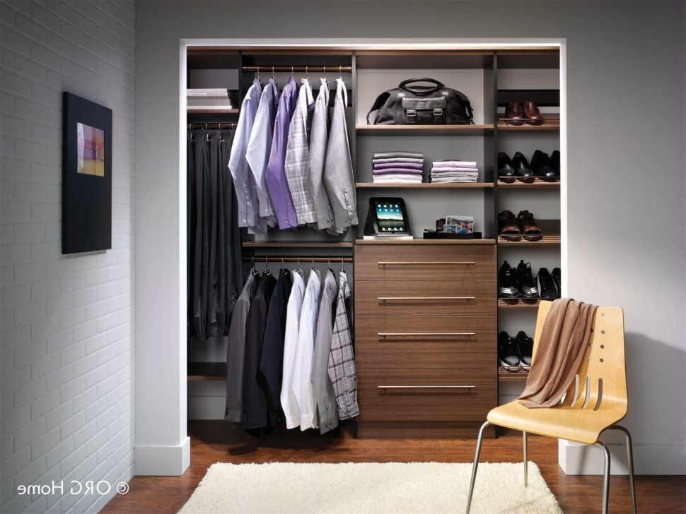 Where To  Wardrobes Regarding Widely Used Furniture : Fitted Wardrobes Where To Buy Closet Organizers Closet (View 15 of 15)