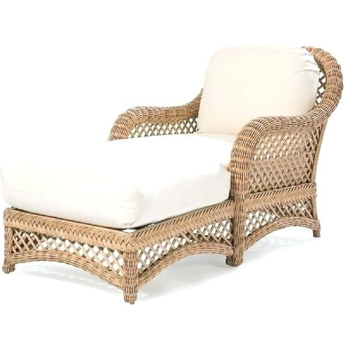 Wicker Chaise Lounge Four Seasons D Chaise Wicker Chaise Lounge With Trendy Wicker Chaise Lounges (View 10 of 15)