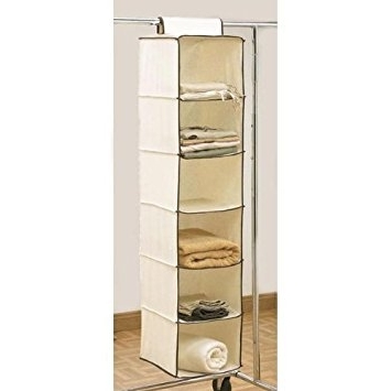 Widely Used Hanging Wardrobes Shelves With 6 Shelf Hanging Wardrobe Storage Unit Sweater Organiser: Amazon (View 15 of 15)