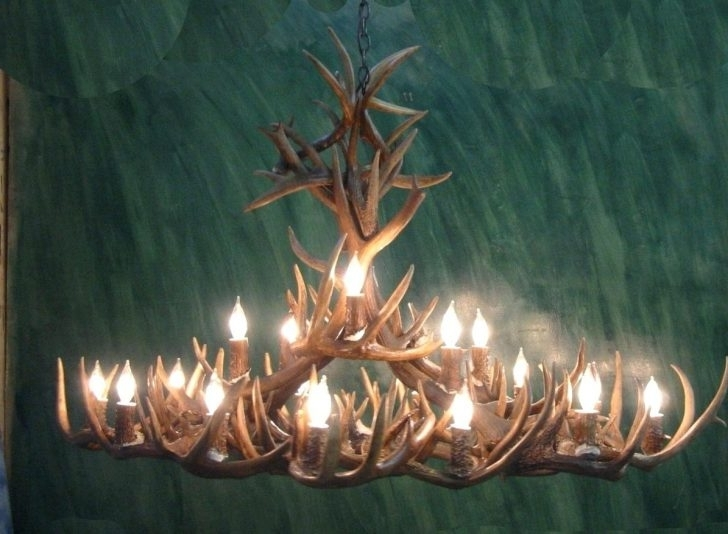2017 Whitetail Antler Chandelier Real Mad River Mule Deer Side View 2 Within Turquoise Antler Chandeliers (View 1 of 10)