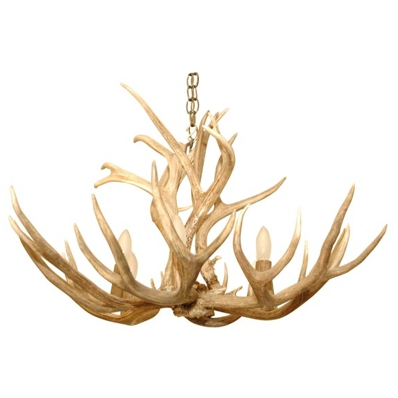 5 Point Stag Horn Chandelier At 1Stdibs Pertaining To Preferred Stag Horn Chandelier (Gallery 1 of 10)