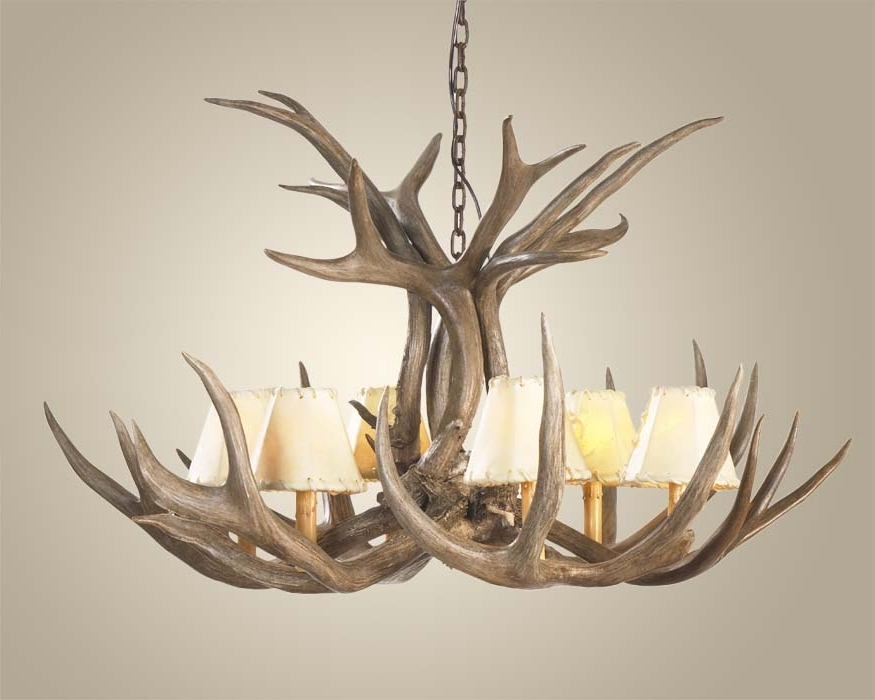 Antler Chandeliers And Lighting With Regard To 2017 Mule Deer Antler Chandelier Antler Chandeliers Free Shipping Deer (View 1 of 10)