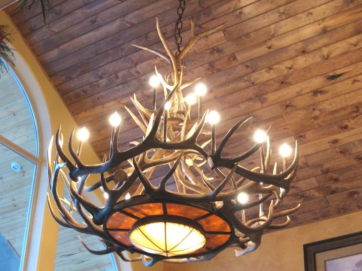 Antler Chandeliers Intended For Most Current Antler Chandeliers For Sale (View 2 of 10)