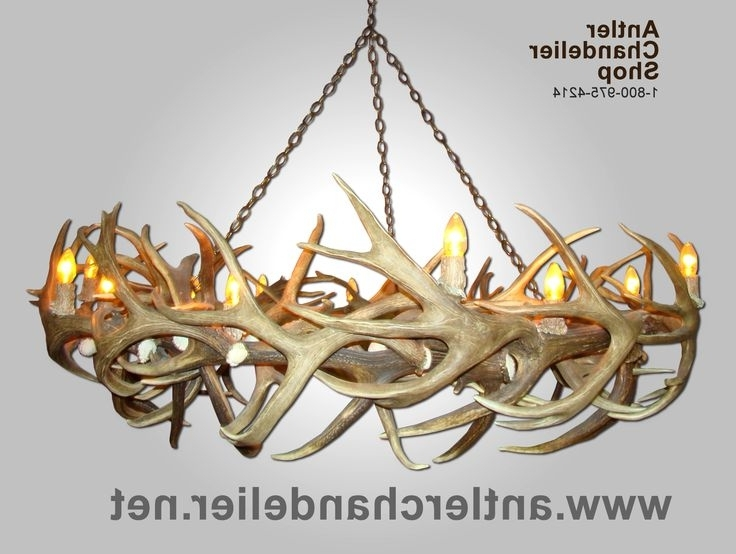 Featured Photo of Turquoise Antler Chandeliers