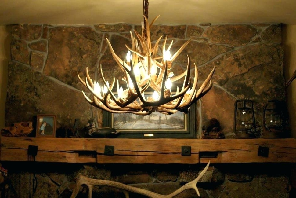 Large Antler Chandelier With Regard To Widely Used Antler Chandelier Canada Antler Chandeliers Elk Antler Chandelier (View 9 of 10)