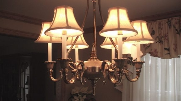 Most Up To Date Lampshade Chandeliers In Traditional Elegant Chandelier Lamp Shades The Attractive Types Of (View 7 of 10)
