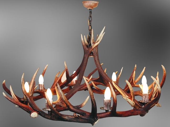 Popular Stag Horn Chandelier Throughout Stag Horn Chandelier – Chandelier Designs (View 2 of 10)