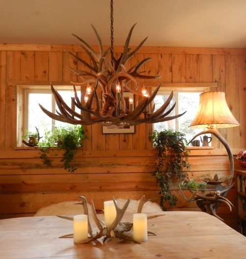 Ragged Mountain Antler Chandeliers (View 8 of 10)