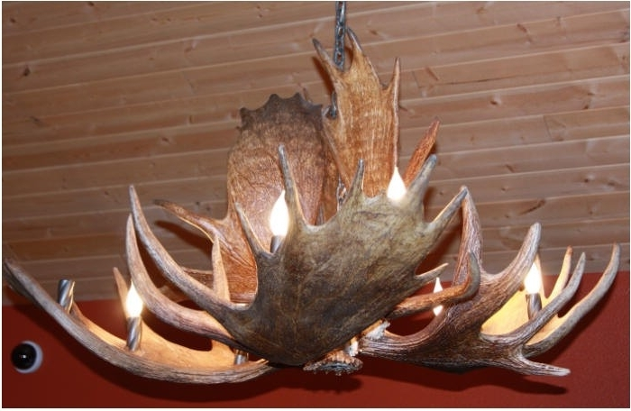 Unique Antler Chandeliers In Northwest Montana For Most Popular Antlers Chandeliers (View 5 of 10)