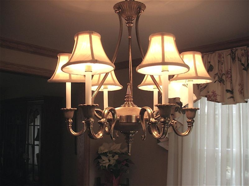 Well Known Chandelier Lampshades With Regard To Mini Chandelier Lamp Shades – Reportthatlegaladvent (View 9 of 10)