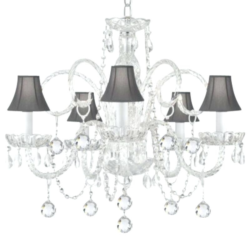 Well Known Crystal Chandeliers With Shades With Regard To Crystal Chandelier With Black Shade As Well As The Gallery Crystal (View 10 of 10)