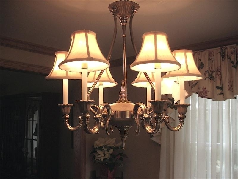 Well Known Lampshades For Chandeliers Inside Lamp Shade Chandelier Lamp Shade Lamps – Uniqueflow (View 9 of 10)