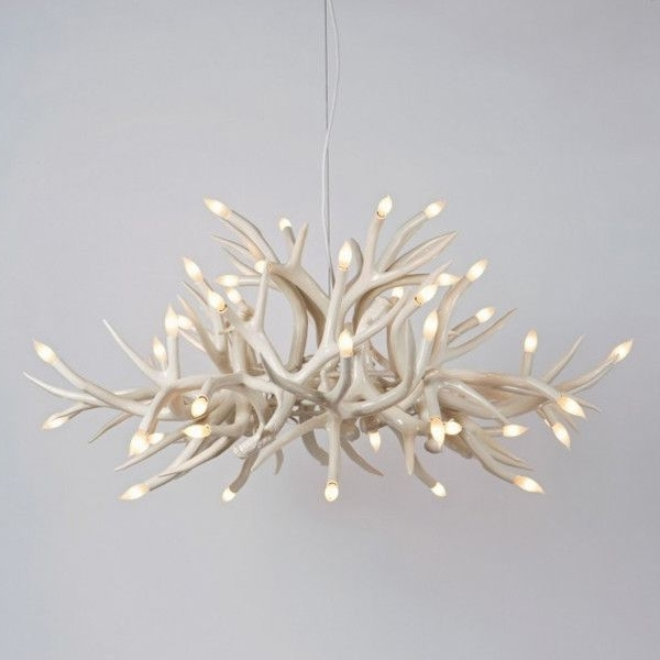 White Contemporary Chandelier For Latest Hill Superordinate Antler Chandelier 24 Antlers Modern Chandeliers (View 10 of 10)