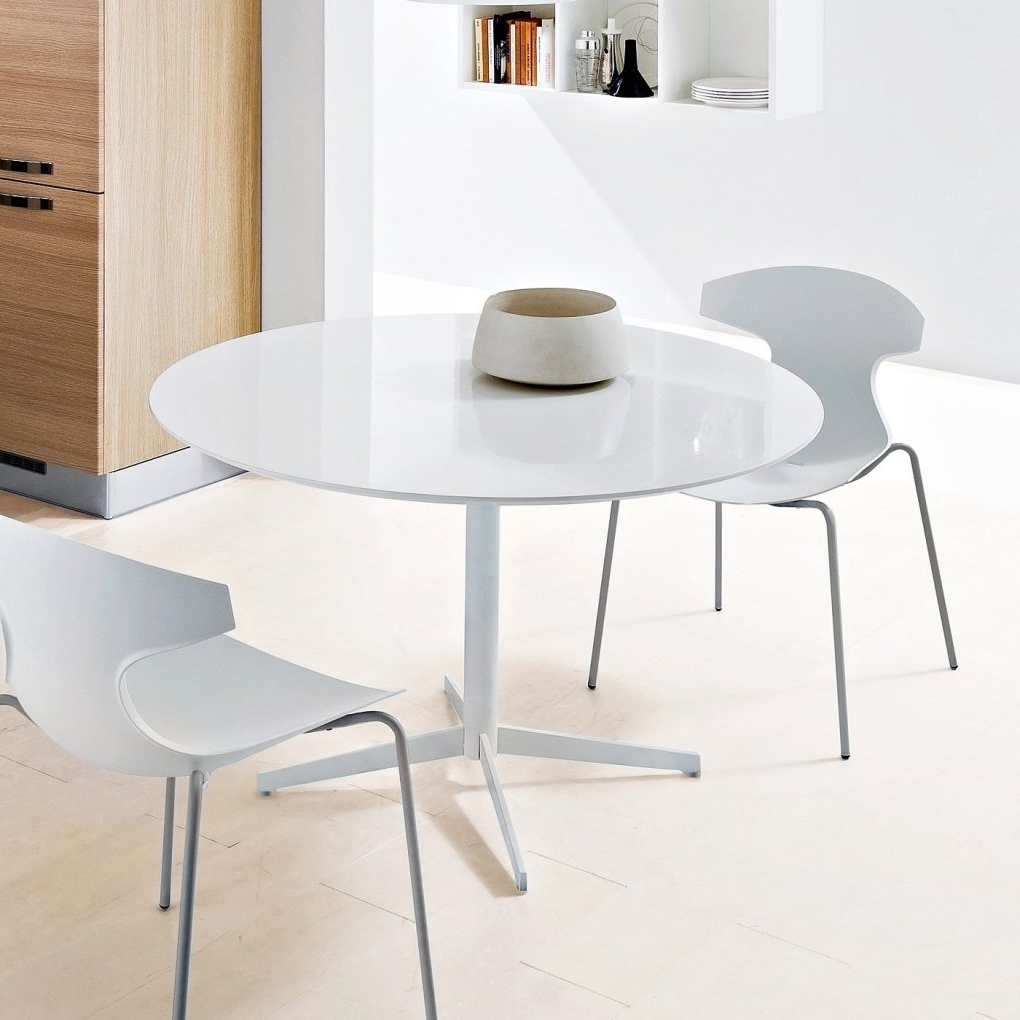 Cintra Side Chairs Regarding Famous Cintra Reclaimed Wood White Expandable Round Dining Table (View 13 of 20)