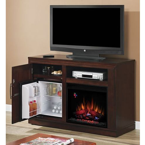 Check Out This Tv Stand, Fireplace, And Mini Fridge – All In One In Most Recently Released Casey Grey 54 Inch Tv Stands (View 5 of 20)