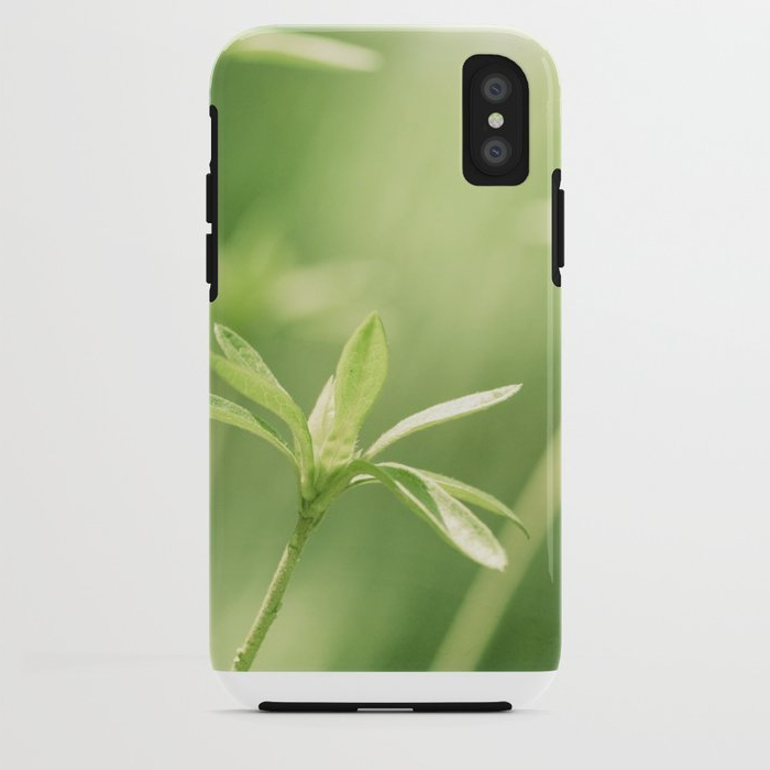 Modern Lcd Tv Cases With Regard To Best And Newest Green Nature Photography, Green Leaves Botanical Art Photo, Colorful (View 12 of 20)