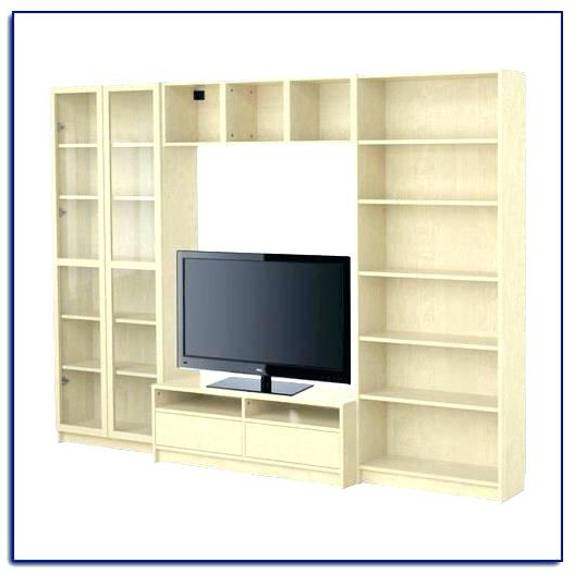 Tv Stands Bookshelf Combo In Newest Tv Stand And Bookcase – Jfawaz (View 14 of 20)