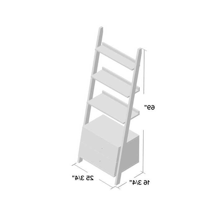 Antoninus Ladder Bookcase For 2019 Antoninus Ladder Bookcases (View 2 of 20)