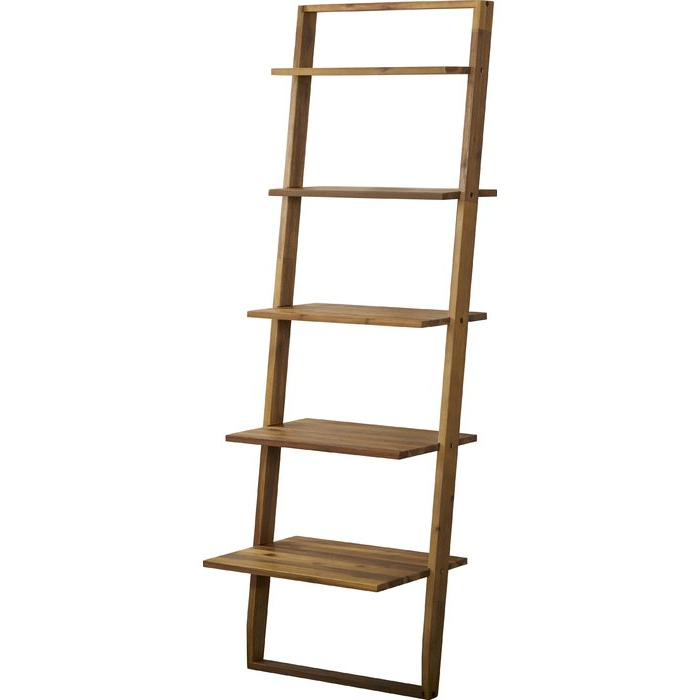 Best And Newest Noelle Ashlynn Ladder Bookcase Pertaining To Noelle Ashlynn Ladder Bookcases (View 2 of 20)