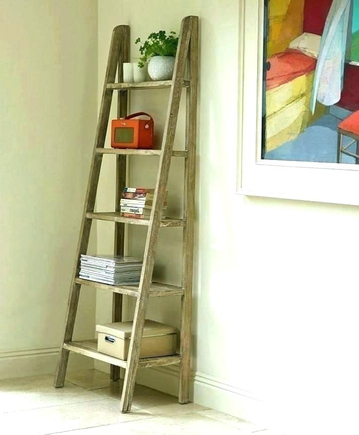 Bookcase With Ladder – Lucasboner (View 12 of 20)
