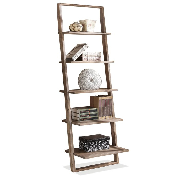 Featured Photo of Noelle Ashlynn Ladder Bookcases