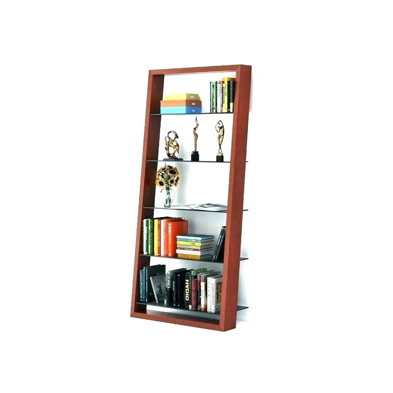 Favorite Bookcase With Ladder – Danyelledevore (View 6 of 20)