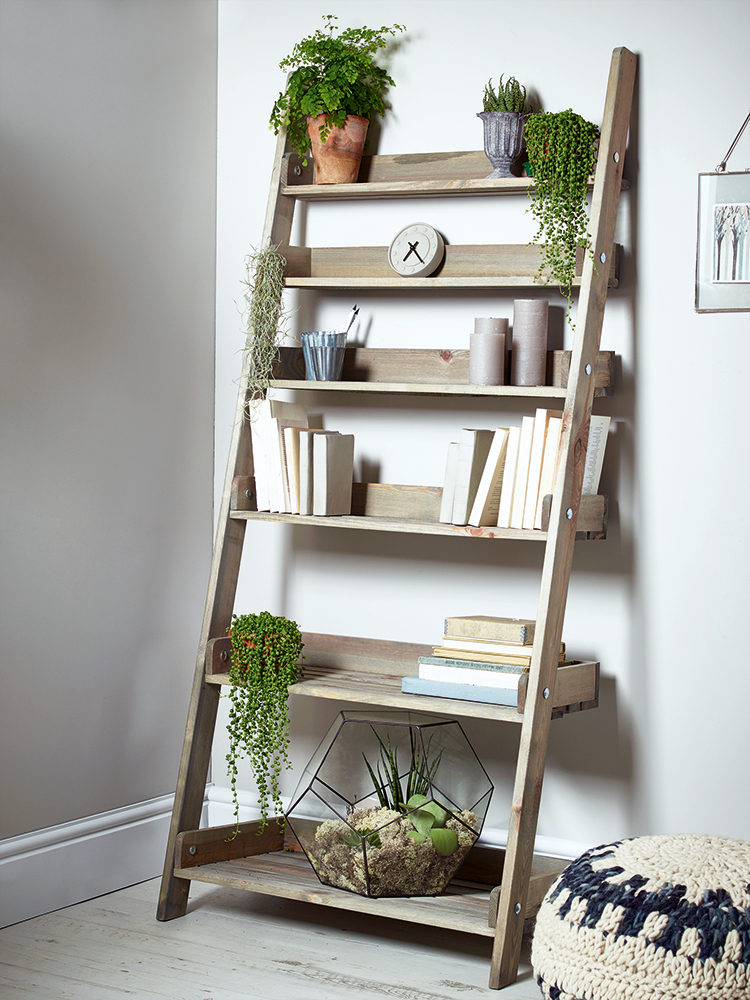 Finishing Touches In Regarding Current Wide Ladder Bookcases (Gallery 4 of 20)