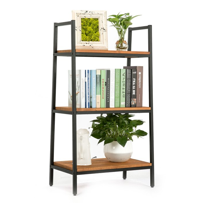 Henn Etagere Bookcases Inside Well Known Hester Street Ladder Bookcase (Gallery 12 of 20)