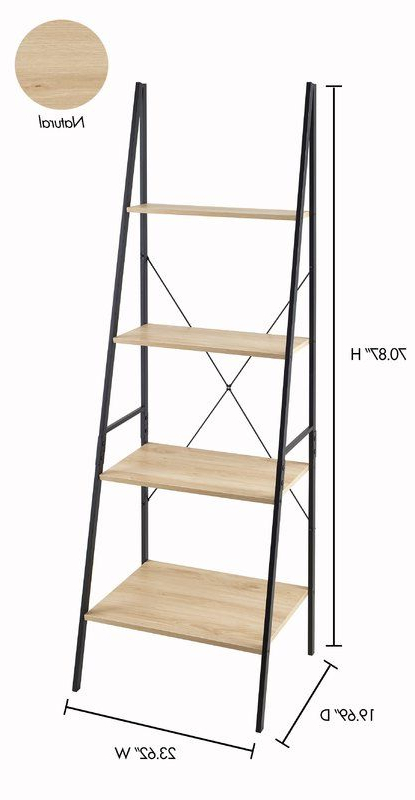 Ladder With Preferred Almanzar Ladder Bookcases (Gallery 10 of 20)