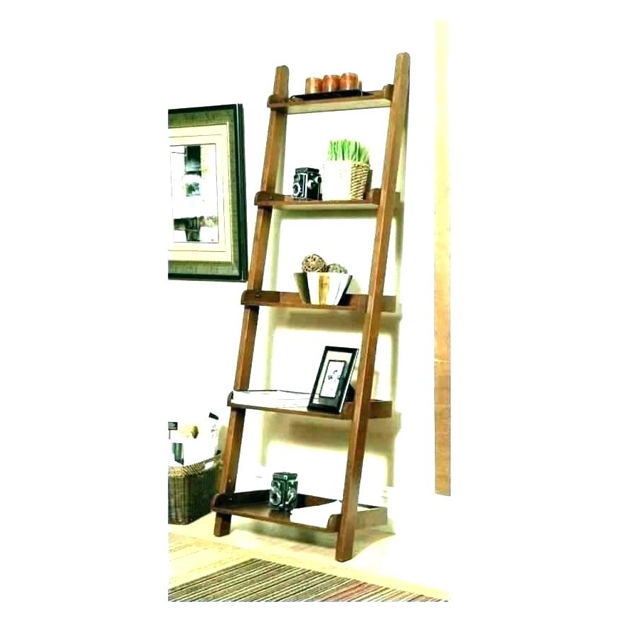 Latest Narrow Ladder Bookcases Pertaining To Tall Bookcases With Ladder – Mercerislandgaragedoors (View 19 of 20)
